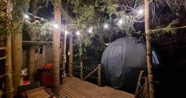 Palapinė medyje vakare