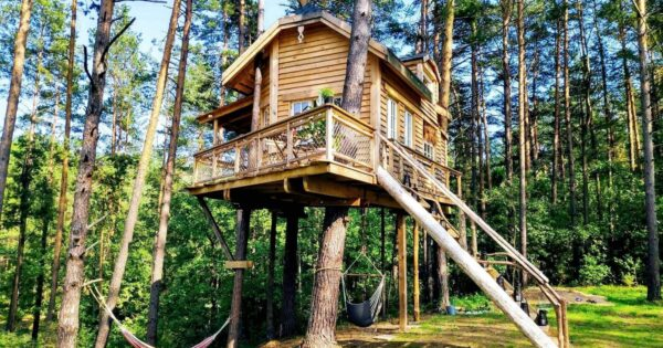 Tree house Molėtai