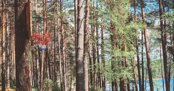 Asalnų stovyklavietė. Krepšinio aikštelė